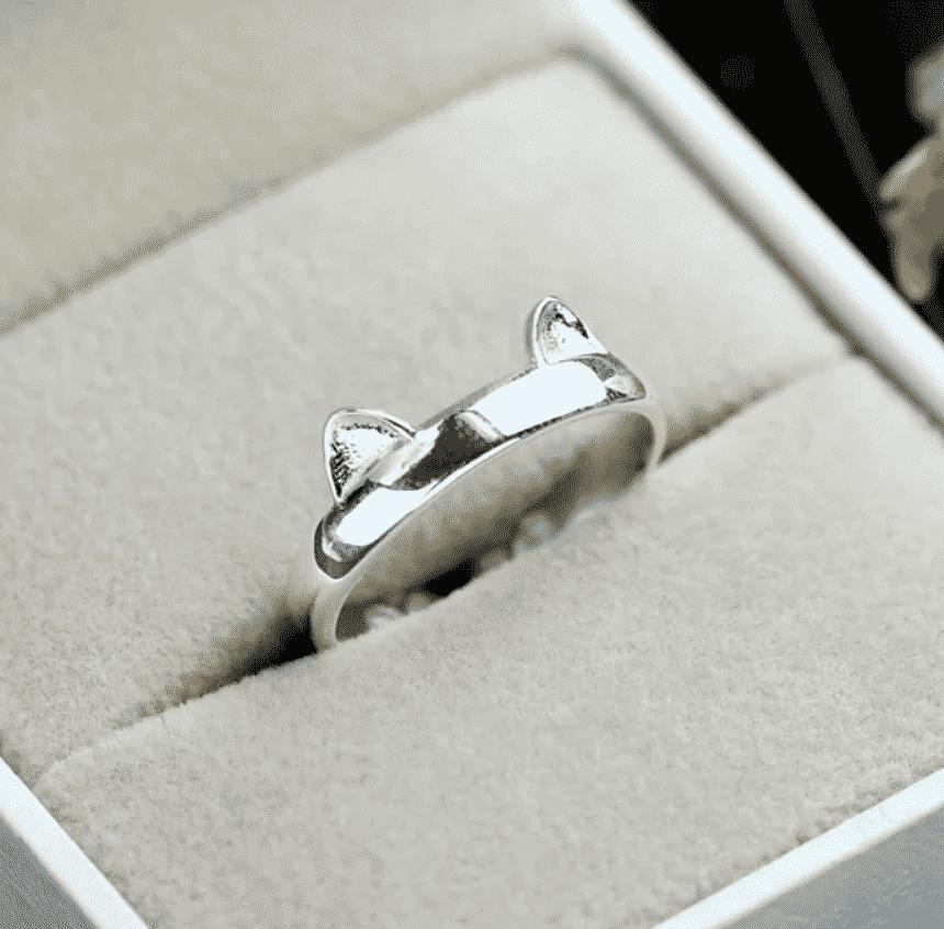 Les petites oreilles de Chat Colorée 7 dans boite à bijoux